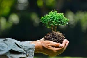 الاستدامة البيئية في السعودية
